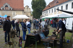 Galeria Wojewódzkie Święto Karpia oPolskiego 2017