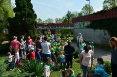 Galeria Drzewka wolności na 100 - lecie niepodległości