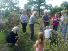 Galeria Drzewka w sołectwach