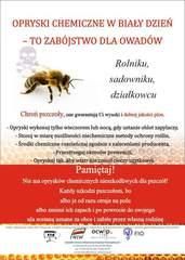 Galeria mała pszczoła